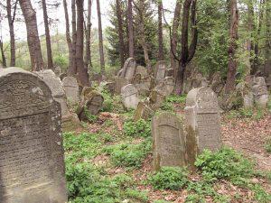 cmentarze w polsce