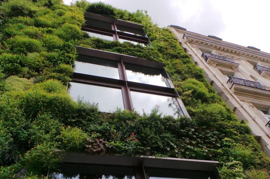 budownictwo_ekologiczne