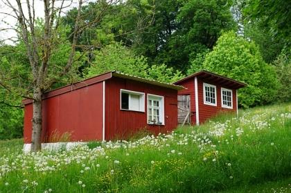dom na ogródku działkowym (ROD)
