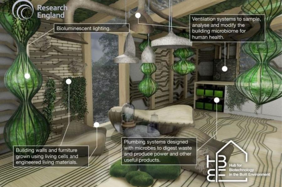 żywy dom ekologiczny i pasywny - wnętrze