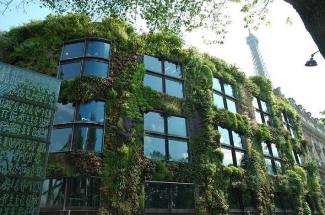 zielona fasada - organiczny beton