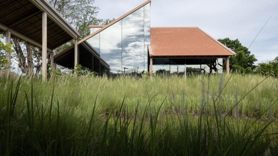 Patom Organic Cafe - projekt organicznej kawiarni