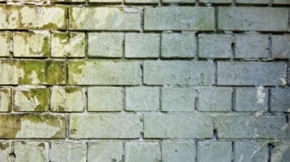 wilgoć w ścianie