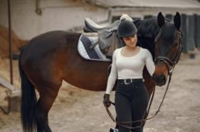 hala ujeżdżeniowa dla koni